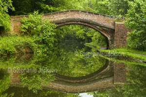 Arched brick bridge reflected in the tranquil waters of a canal in England.