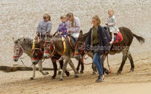 Children riding donkeys on the beach at Whitby in Yorkshire, England.