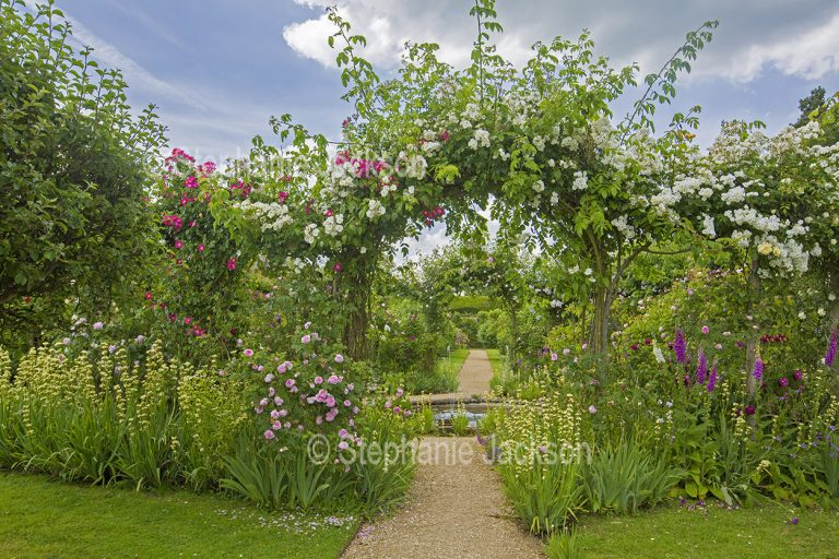 Garden with archway covered with climbing roses at Rousham gardens near Oxford, England.