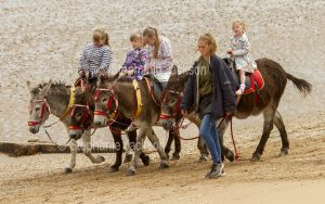 Donkey rides on the beach are a long tradition in England.