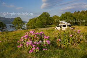 Holiday, travel, free camping,Campervan beside Loch Morar in a landscape with wild rhododendrons flowering, near the village of Morar in Scotland.