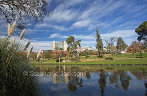Urban landscape with Torrens River and parklands hemmed by buildings of CBD in city of Adelaide, South Australia