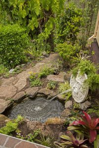 Australian garden with water feature, pond, and stone pathway