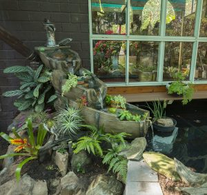 The rockery and waterfall, made to replicate old beer barrels, with water trickling into the pond in the fernery.