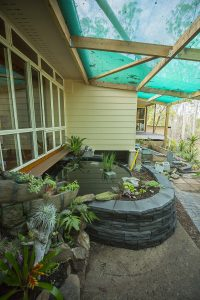 View from the entrance to the fernery. The concrete slab will eventually be covered with decorative paving.
