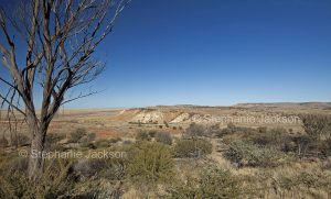 Vast arid Australian outback landscape with mesa / jump ups in Sturt National Park in NSW Australia