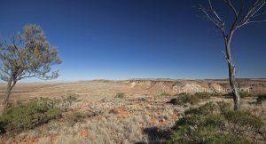 Vast arid Australian outback landscape with mesa / jump ups in Sturt National Park in NSW Australia
