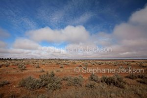 Outback plains near Broken Hill in NSW Australia.