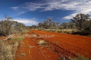 Road through bushland at Gundabooka National Park in outback NSW Australia