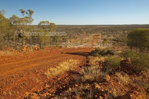 Road from The Bluff lookout at Yowah, vanishing into wooded plains that stretch to the horizon in outback Queensland, Australia