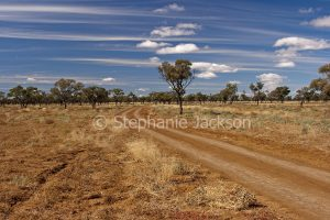Track across plains near Quilpie in south-western Queensland Australia.