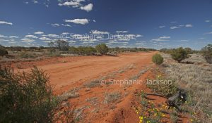 Outback road in north-western NSW Australia.