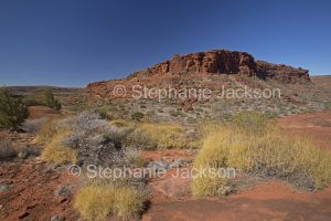 Finke Gorge National Park in the West MacDonnell Ranges, in the outback, Northern Territory, Central Australia