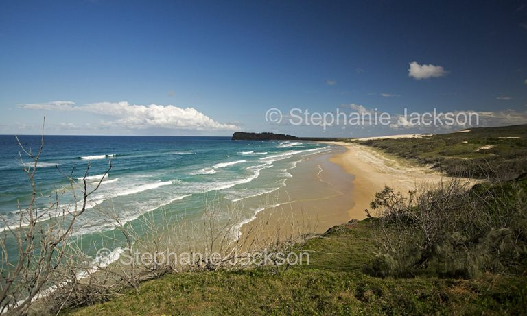 Australian coastal landscape with Pacific Ocean waves rolling onto vast beach, hemmed with forested sand dunes on world heritage listed Fraser Island in Queensland Australia