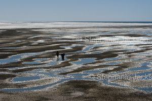 Beach at low tide with people standing on bare sand among pools of blue water under blue sky at Hervey Bay in Queensland Australia