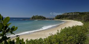 Australian coastal landscape with sandy beach and forested dunes at Seal Rocks in NSW Australia