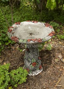 Decorative concrete birdbath with design of red roses in a garden in Australia