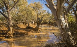 Blackwater Creek at Adavale, in outback Queensland Australia