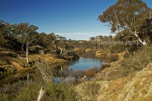 The Bombala River, near the NSW town of Bombala