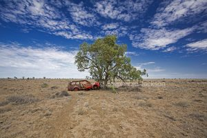 Car crashed into solitary tree on outback plains in the Northern Territory, Australia