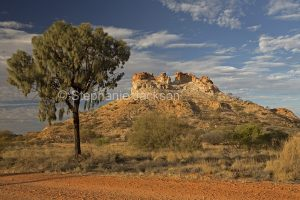 Castle Rock, a geological formation, in the outback, in Central Australia. The solitary tree is as desert oak, Allocasuarina decaisneana