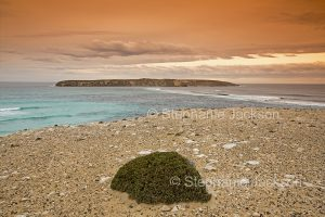 Coastal landscape with view of Golden Island in Coffin Bay National Park on Eyre Peninsula South Australia