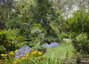 Sub-tropical garden with water feature, flowers, trees and lawn in Queensland Australia