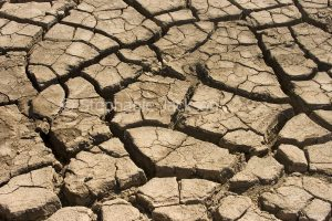 Cracked soil in agricultural area during drought in Queensland Australia