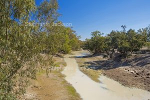The Culgoa River at Culgoa National Park in outback / north-western NSW Australia.