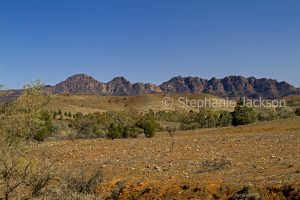 Dirt road / track winding through hills of Flinders Ranges National Park in outback / northern South Australia