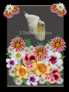 Floral art design. Mass of colourful flowers with sulphur crested cockatoo flying above on grey background with black border.