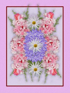 Floral art design. Pink, mauve and white flowers on lilac background with pink frame.