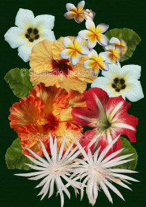Floral art design. Red, orange and white flowers and emerald foliage on dark green background.