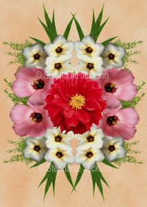 Floral art design - red, white and pink flowers on apricot background