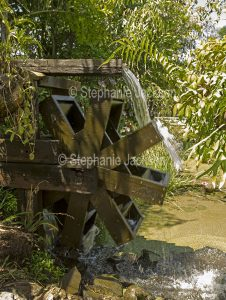 Wooden waterwheel in garden pond in Queensland Australia.