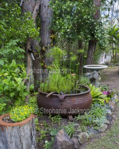 Garden with water feature / pond and bird bath.