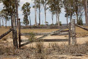 Old wooden gate in farmland in Queensland Australia