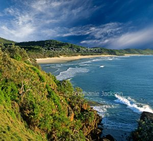 Bay, steep handland, forested dunes, and sandy beach at Grassy Head in NSW Australia