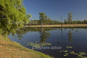 Hood's Lagoon and parklands at the outback town of Clermont in Queensland Australia