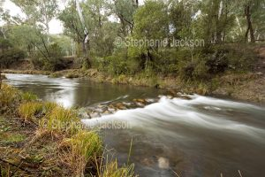 The Howqua River in the Victorian high country.