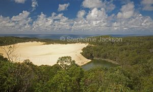 Lake Wabby, surrounded by sand dunes and forests, on world heritage listed Fraser Island in Queensland Australia