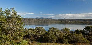 Panoramic landscape, forested landscape at Wapengo Lake, near Merimbula in NSW Australia.
