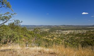 Landscape of valley and woodlands hemmed by hills of the Great Dividing Range near Many Peaks in Queensland Australia.
