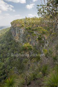 Cliffs and forest in Kroombit Tops National Park in Queensland Australia