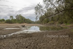 Mary River at Tiaro in Queensland Australia, during a severe and prolonged drought.