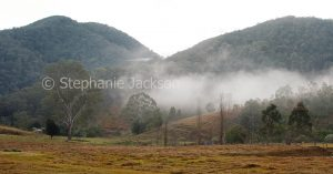 Early morning mist in a valley at the foot of forested hills near Kempsey in NSW Australia.