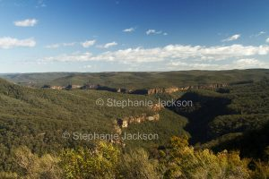 Forested landscape with hills and gorges of the Great Dividing Range at Morton National Park in NSW Australia