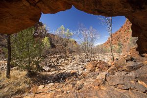 N'Dhala Gorge n the East MacDonnell Ranges, in the outback, Northern Territory, Central Australia