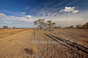 Arid outback landscape during drought near Wilcannia in NSW Australia.