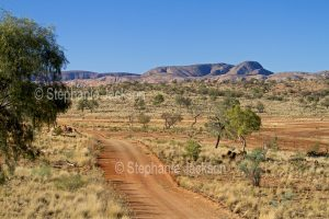 Outback landscape in the the East MacDonnell Ranges, in the Northern Territory, Australia.